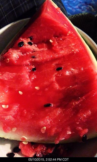 Post the very last (most recent) photo in your camera roll.-imageuploadedbytapatalk1432296580.034418.jpg