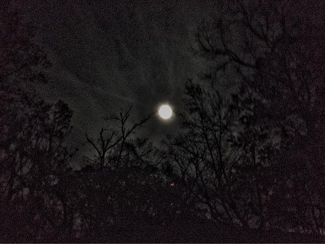 Moon Picture-imageuploadedbytapatalk1448418061.936034.jpg