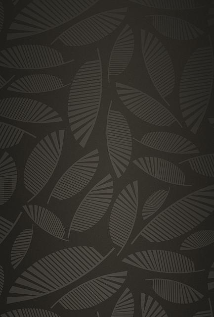 Looking for a new wallpaper or have one to share?-palm-fronds.jpg