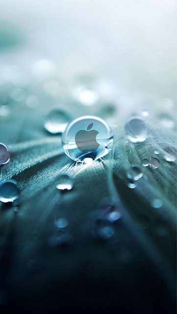 iPhueria's wallpaper den-apple-droplet.png