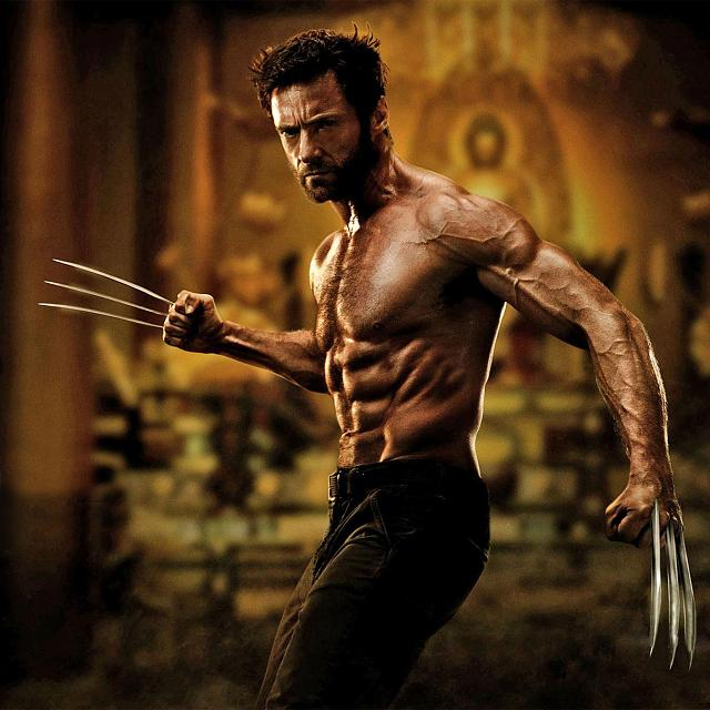 Iphone Wallpaper: The Wolverine Retina Wallpapers