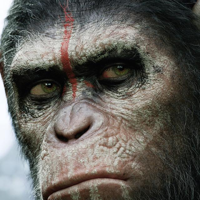 Dawn of the Planet of the Apes Retina Movie Wallpaper-dawn-planet-apes-2014-2048x2048.jpg