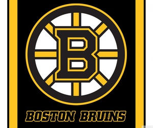 Sports Themes Wallpapers-boston-bruins-b78fe76de0b9af10b01ce68e5f45b4c6.jpeg